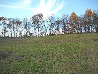 Dog boarding bluefield WV